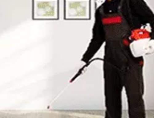 شركة مكافحة حشرات بالحناكية